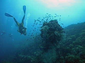 Snorkeling and Scuba diving Holidays Madagascar Nosy Be